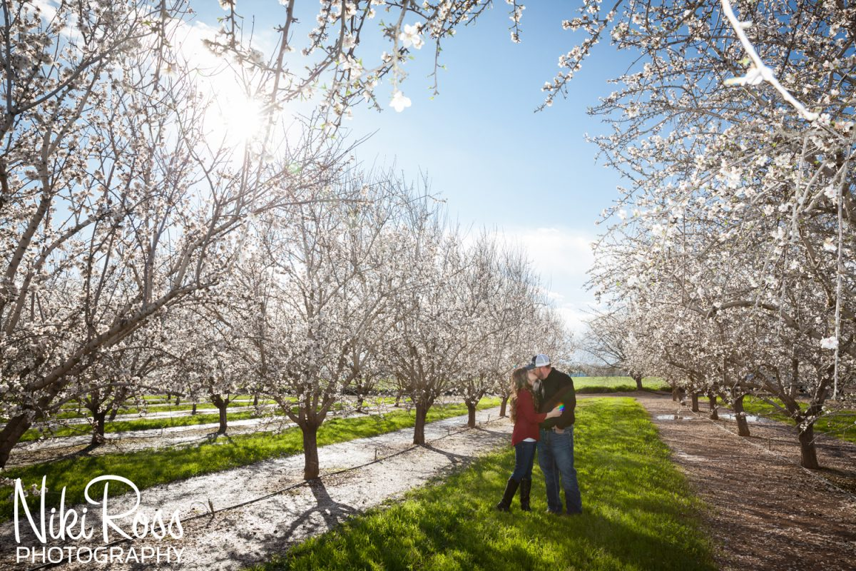 Almond Orchard Engagement-13