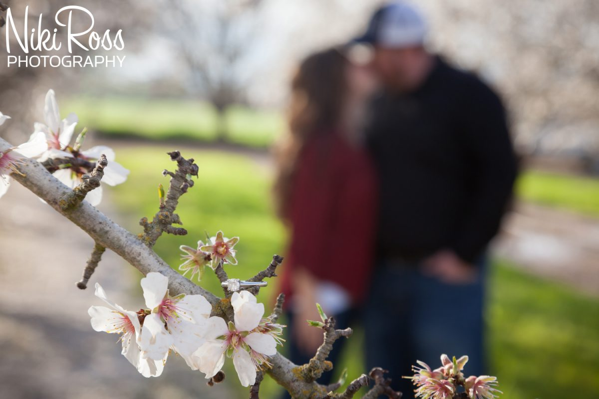 Almond Orchard Engagement-14