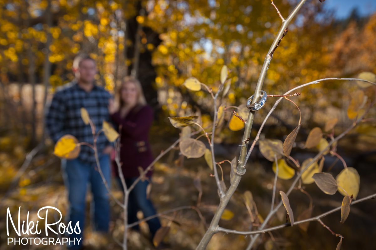 Fall Engagement Session-013